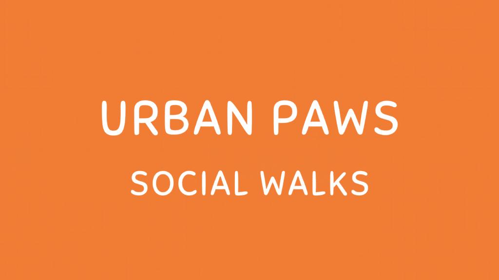 Puppy Walks Lincolnshire